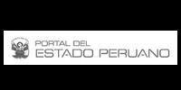 Logo-portal-flexicash2